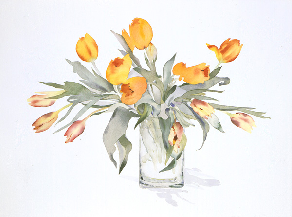 tulips in a square vase by susan van campen 2006 watercolor painting 23