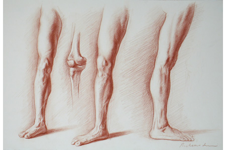 Drawing Bodies 101 -- Artistic Anatomy and Drawing the Leg