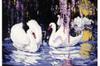 Swans by Leopold Krumel, screenprint drawing