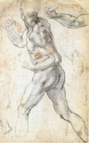 Male Nude by Michelangelo, drawing