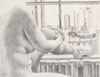 Drawing by Philip Pearlstein, Nude and New York