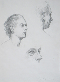 Ephraim Rubenstein's drawing of the neck