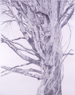 Study No. 2 for In the Garden: Left Panel by Renée P. Foulks, 2004, graphite drawing
