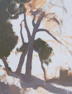 Serrano Oak Study oil