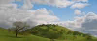The Big Hill at Olompali oil