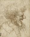Leonardo Da Vinci drawing, Caricature of a Man With Bushy Hair