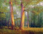 Poole Sunlit Trees oil