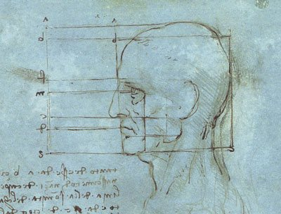 A Leonardo sketch of the head.