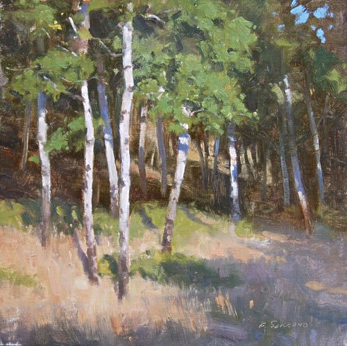 Sunlit Birch by Frank Serrano, oil on canvas, 12 x 12.