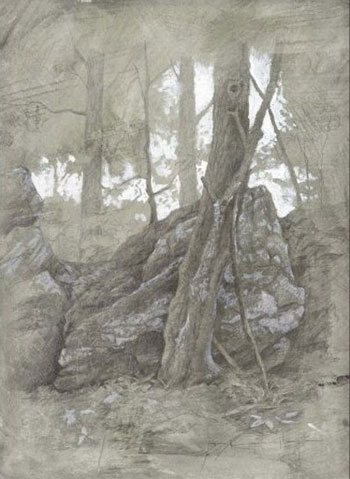 Maple Grove & Rocks by Thomas Kegler, 12 x 9, drawing with silver point & gouache heightening.