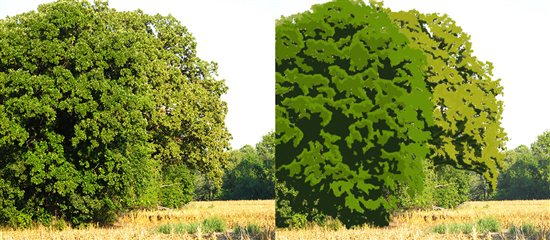Painting trees: This is a white oak, with a second oak sitting just behind it. We love the shape of these old trees. Notice how the leaves clump into distinctive shapes with dark shadows around the clumps. This is typical for a white oak, and makes them easily identifiable. In this illustration we have merged some of the many small clumps into larger masses for simplicity.