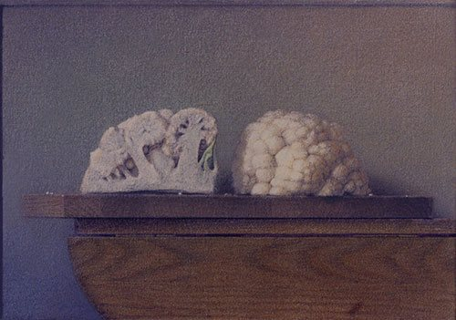Still Life With Two Quartered Cauliflower 2005, colored pencil and ink wash on canvas, 14 x 20. Private collection.