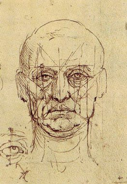A straight on drawing of the head by Leonardo.