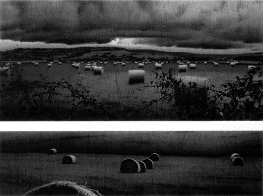 115 Bales and One Silver Ring, Normandy, France by Anthony Mitri, charcoal drawing, 22 1/2 x 30, 2002.