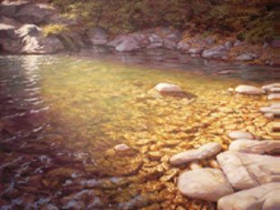 William Hays paints light and color effects of various bodies of water.