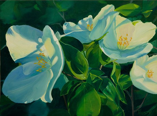 Painting flowers can be a study in different shades of white, as in Ann's flower oil painting, Philadelphus III.