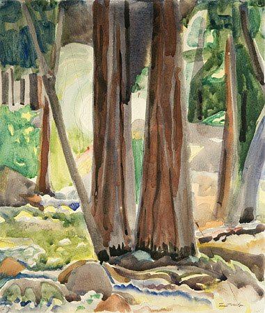 Yosemite Trees, c.1920, 15 1/2 x 13 1/4, watercolor on paper.