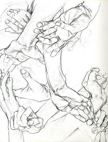 Hands by Sarah Simblet, drawing.