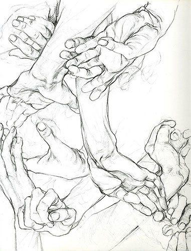 Hands by Sarah Simblet, drawing.