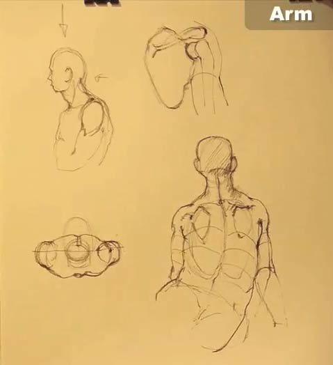 Drawing 2, showing figure drawings of correct arm positions.