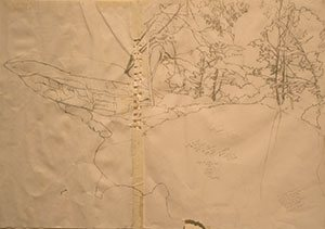 Whiskey Creek By Kate Harding, 2007, graphite drawing and tape on paper, 17 x 23 1/2.