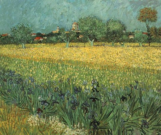 View of Arles with Irises by Vincent van Gogh, oil painting.