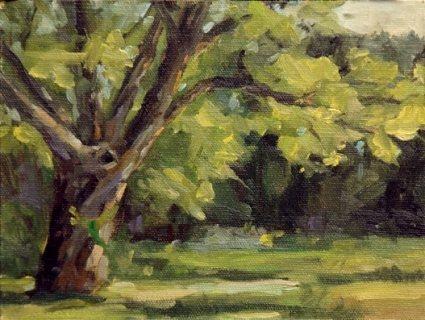 5047.tree2.jpg