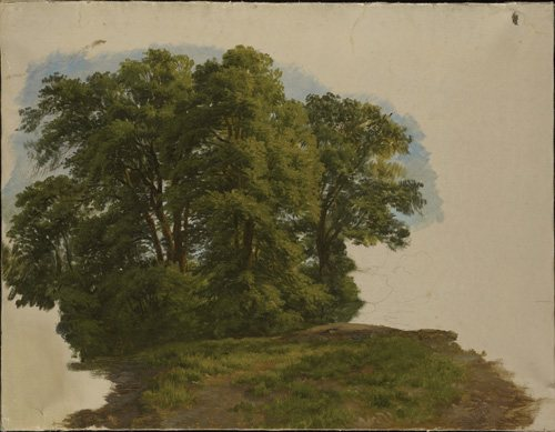 Group of Trees by Gilles-Francois-Joseph Closson, oil on paper mounted to canvas, 14 3/4 x 19 1/8.