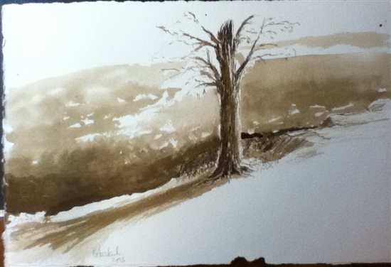 Homebrew black walnut ink sketch on Lanaquerelle by Robert Haslach, 2013.