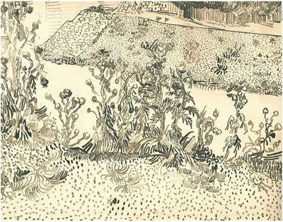 Thistles Along the Roadside by Vincent van Gogh, drawing, 1888.