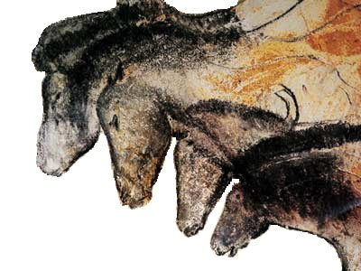 Drawings of horses in the Chauvet Caves.