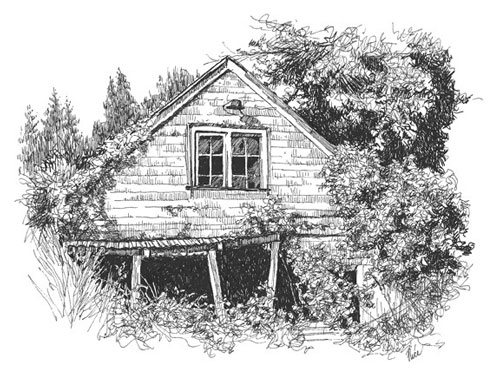 A pen and ink drawing of an abandoned house by Claudia Nice .