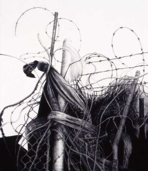 Trap by Joan Wadleigh Curran, charcoal drawing on paper, 32 x 28, 2004.