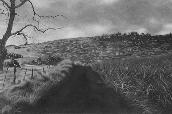 101 best Charcoal Drawing images on Pinterest | Art ...  |Charcoal Drawings Of Landscapes