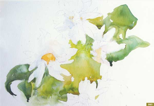 How To Paint A Watercolor Floral Still Life Step By Step Artist Daily