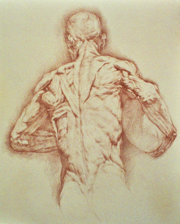 Back View by Kurt Long, 2008, colored pencil drawing