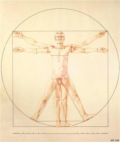 Anthony Panzera drawing after The Vitruvian Man drawing by Leondardo Da Vinci