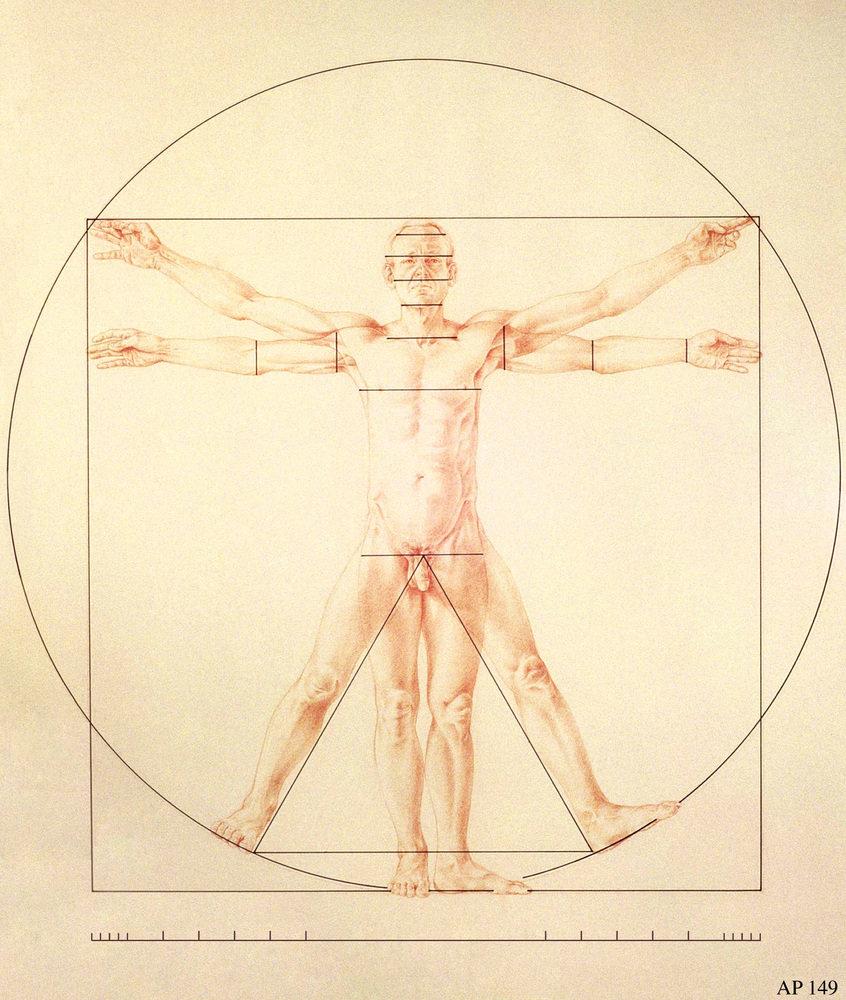 Panzera's drawing after Leonardo da Vinci's Vitruvian Man