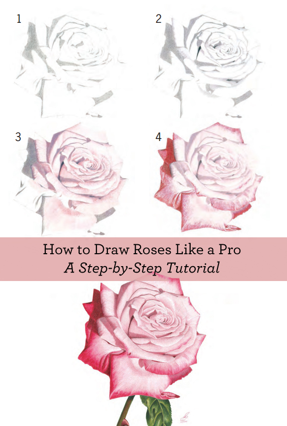 Learn how to draw a rose with these FREE step-by-step instructions!