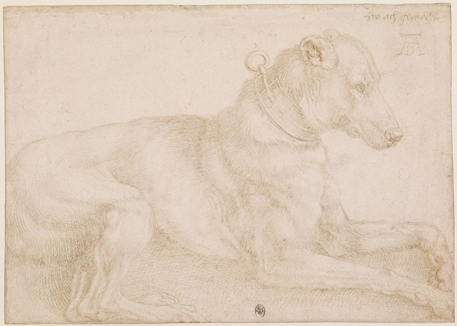 silverpoint drawing durer