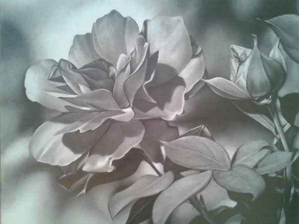Tips for drawing flowers, from Lee Hammond | ArtistsNetwork.com