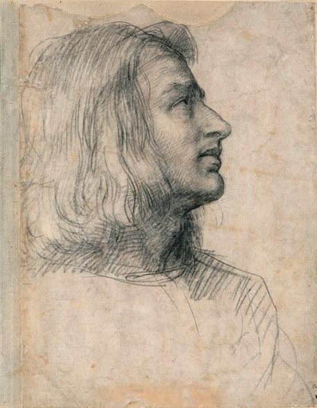 Del Sarto figure drawing