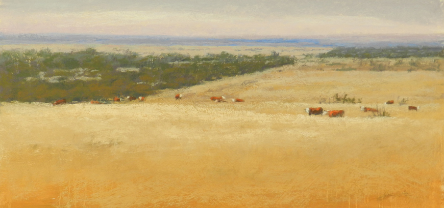Golden-Field-of-Cattle---Copy