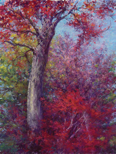 Crimson Glory (pastel) by Susan M. Story
