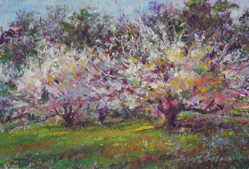 Spring Ballerinas (pastel) by Susan M. Story