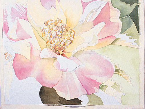 Watercolor demo: painting flowers with Jane Freeman | ArtistsNetwork.com