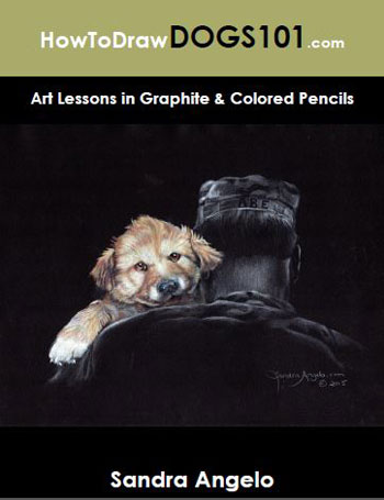 How to draw dogs, with Sandra Angelo | ArtistsNetwork.com