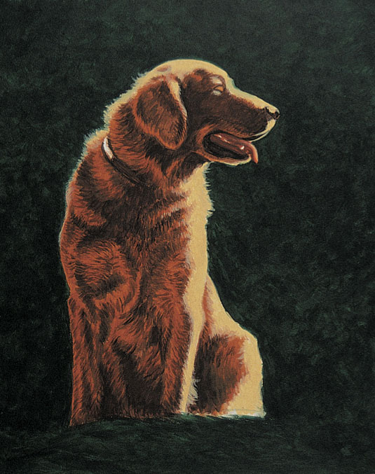 How to paint dogs, with Jeanne Filler Scott | ArtistsNetwork.com