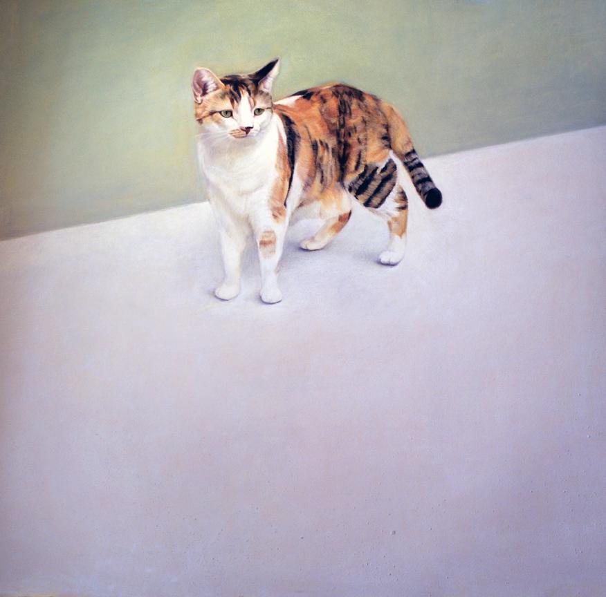 Gato-pastel-Manuel-Rodrigues-Almeida