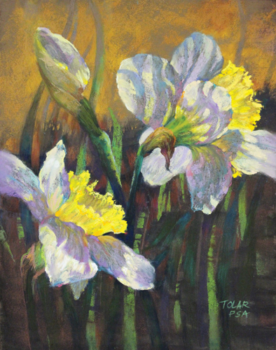 Backlit Daffodils (pastel, 14x11) by Jude Tolar | pastel florals